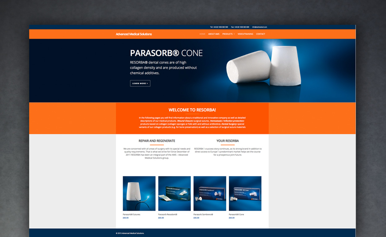 Project Web Site Design For Medical Technology Company